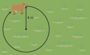 Cow following a locus path with a radius of 4m