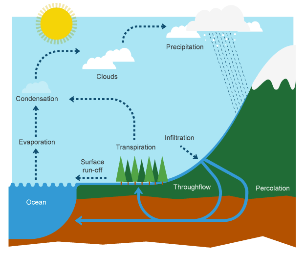 BBC Bitesize KS3 Geography The water cycle and river – Water Cycle Worksheet High School