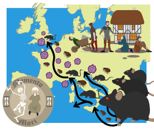 the tragedy of the black death and its influence on europe Online library of liberty  i have traced the rise of the industrial spirit in europe its  produced a bias towards witchcraft—the black death—influence of .