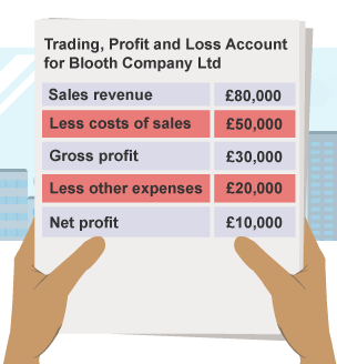 sales in profit and loss account