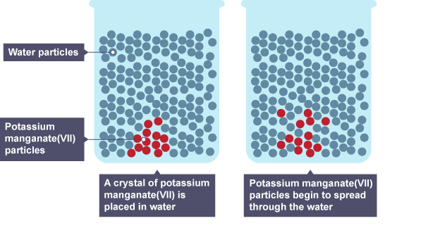 The particles have moved from a region of high concentration in the crystal to a low concentration in the water. This difference in concentration is called a concentration gradient.