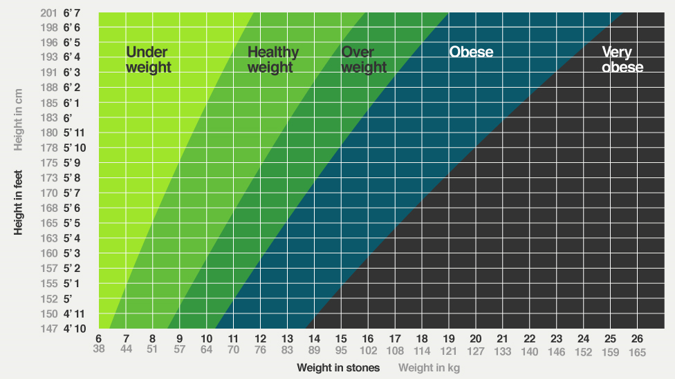 Bbc Iwonder Fit And Fat Is Bmi The Best Way To Tell If Youre