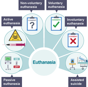 euthanasia case studies religious education A secondary school revision resource for gcse religious studies looking at islamic views on euthanasia.