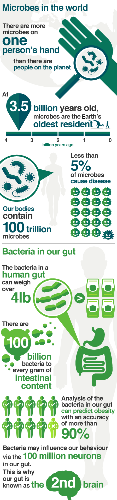 How microbes affect all aspects of our lives - from breathing to the food we eat.