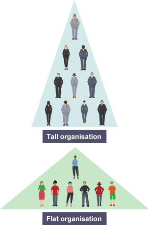 hierarchical structure tall essay Type of organisational structure and purpose of tesco and oxfam part a tesco organisational structure is hierarchical essay will examine organisational structure.