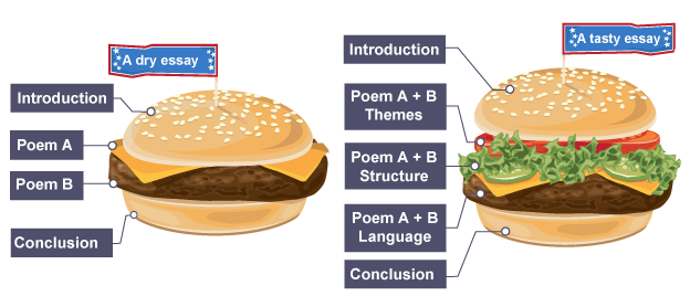 bbc bitesize gcse english literature comparing poems revision  infographic illustrating how to properly structure a comparative essay a tasty burger essay