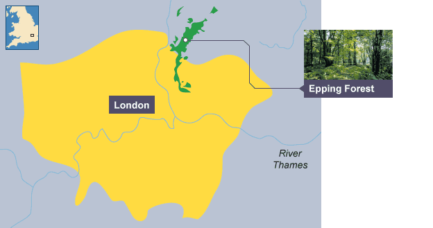 CASE STUDY - Epping Forest - Tropical Rainforests and ... on map of regina sask, map of kingsley plantation, map of m25 motorway, map of windsor great park, map of emirates stadium, map of historic annapolis, map of city of westminster, map of west coast of scotland, map of richmond park, map of borough market, map of parliament square, map of river tweed,