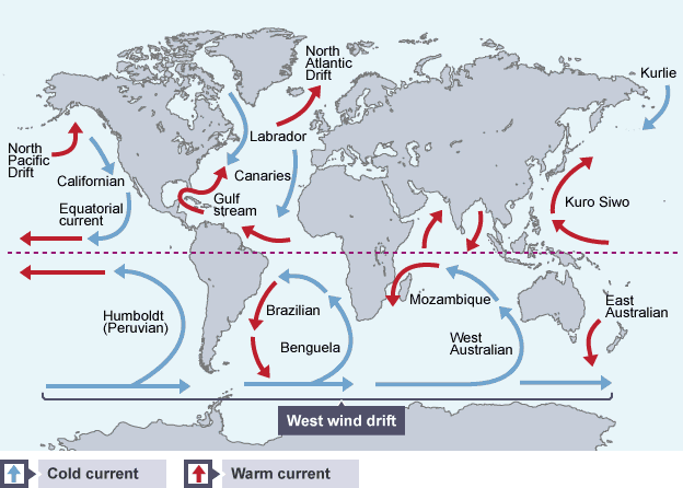 How do ocean currents help maintain earths heat balance socratic httpbbceducationguides gumiabroncs Images