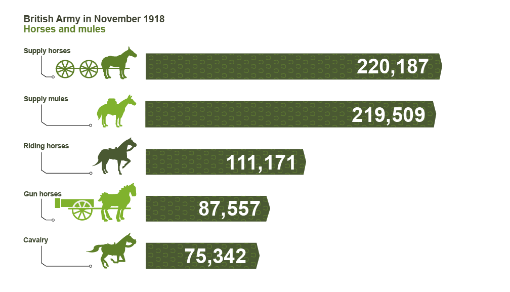 Bbc Iwonder Who Were The Real War Horses Of Ww1